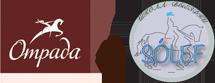 Клуб выездки «Отрада & Solef» -